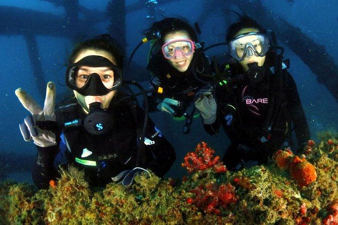 Fun Dives (1 day)