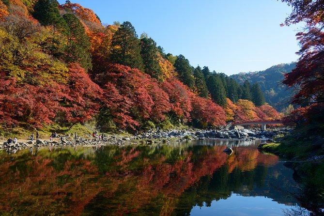 Herbstlaub in der Präfektur Aichi: Korankei & Obara Shikizakura