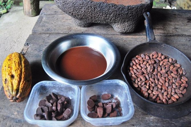 The chocolate forest experience & Cahuita National Park