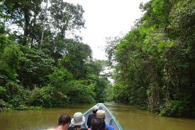 Excursión a la selva de 4 días en Cuyabeno