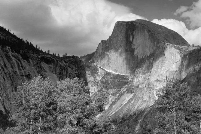 Half Dome, Cottonwood Trees by Ansel Adams
