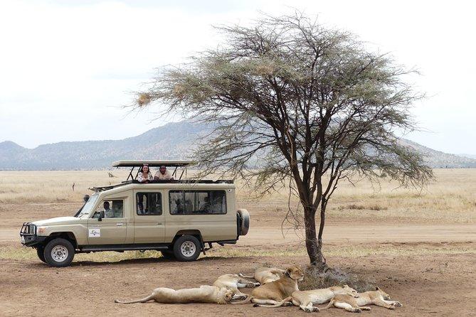 Private 6-Day Tarangire Manyara Crater and Serengeti with Mid-Range Lodges