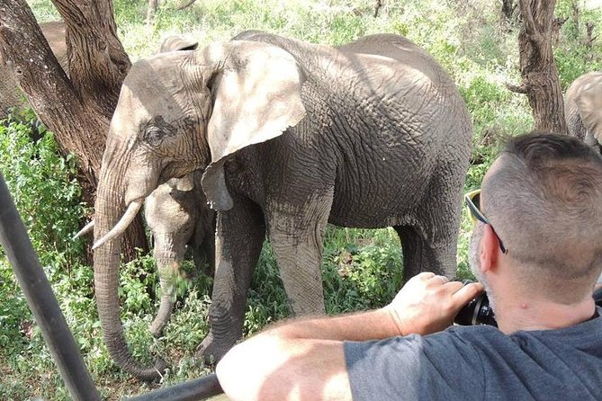 Full-Day Trip to Tarangire National Park