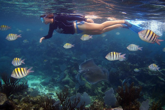 Snorkeling Tour in Playa del Carmen