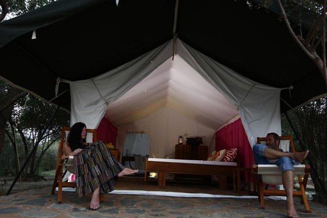 Luxe kamperen in Yala National Park met Leopard Safari en BBQ