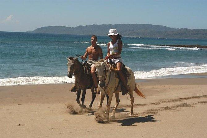 Horseback Riding Jungle and Beach in Playa Flamingo