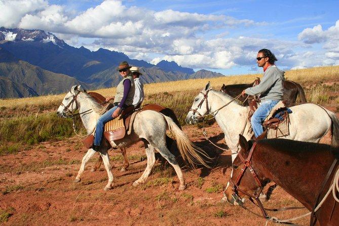 Half day: City Horse Riding - Mistic Tour - Group Service
