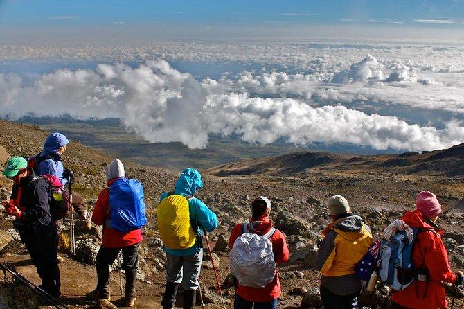 8 Days Kilimanjaro Climbing - Lemosho Route