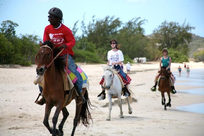 Horseback Beach Experience Antigua