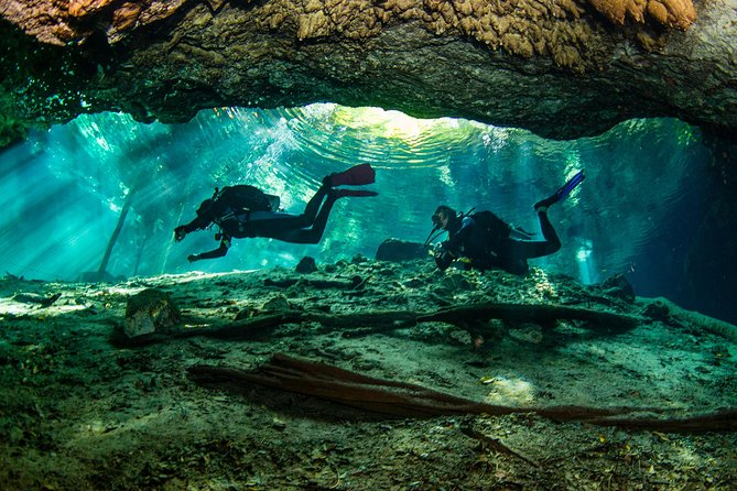 2 different divings in the same cenote for certified divers in Tulum