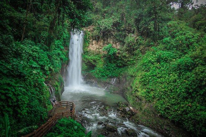 Doka Estate and La Paz Waterfalls Gardens from San Jose