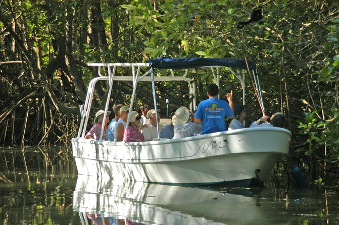 Damas Insel Mangroven Tour von Quepos