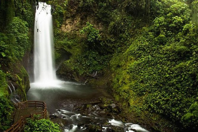 La Paz Waterfall Gardens Park and Refuge Tour