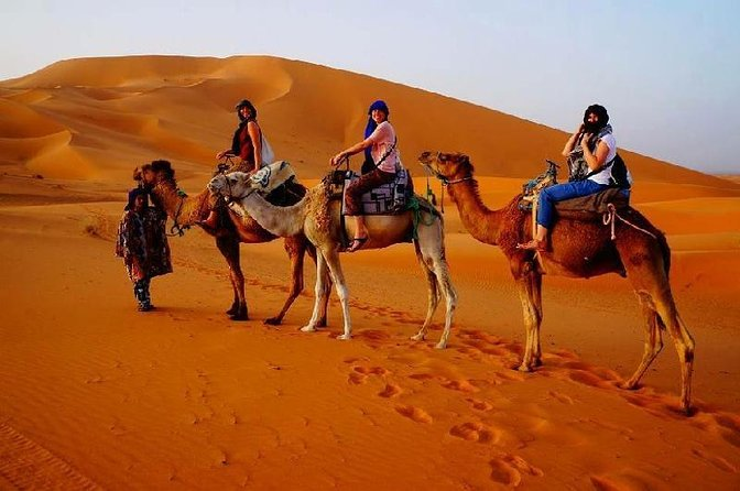 3 Days Desert Group Tour to Marrakech from Fes with Night in Erg Chebbi