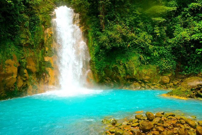 Rio Celeste Hiking, Sloth Sanctuary & Llanos de Cortes Waterfall Tour