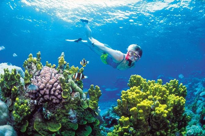 Snorkel, ATV, Zipline and Cenote Adventure from Cancun