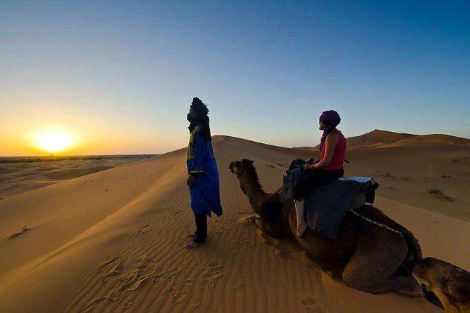 Day Trip from Errachidia to Merzouga Desert