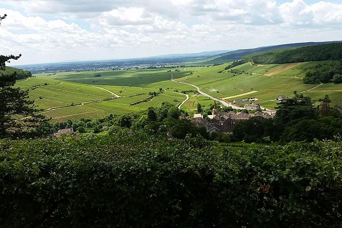 Full-day Private Burgundy Wine Route Tour from Beaune