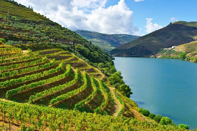 Douro Valley Full Day Private Tour with Lunch