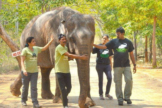 Visit Asia Largest Bear Rescue Center and Elephant Rescue Center from Delhi to Delhi