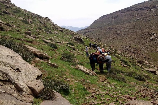 Day Trip From Marrakech To Imlil The Atlas Mountains