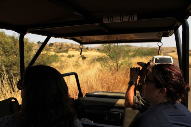Full-Day Pilanesburg Nature Reserve Tour