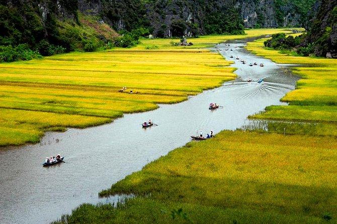 Hoa Lu Tamcoc 1 day trip