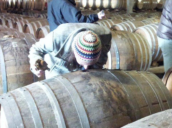 Public day-tour from Bordeaux: The Cognac, a luxury and terroir product