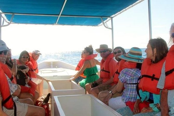 Explore Los Cabos City Tour, Glass-Bottom Boat Ride, Lunch and Shopping