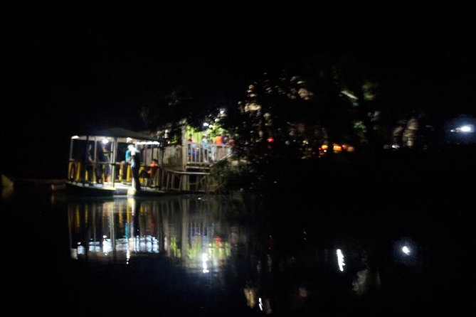 Firefly Watching Tour with Dinner in Puerto Princesa