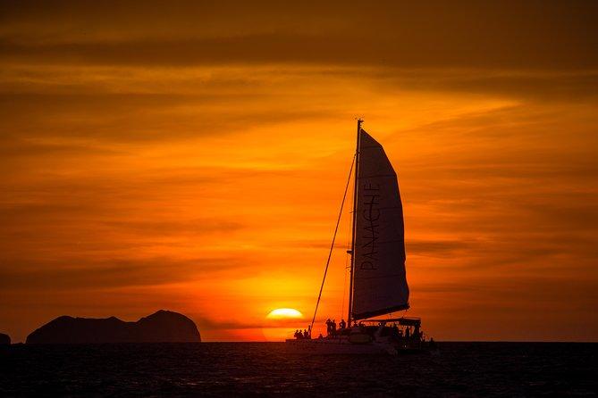 Sunset Catamaran Tour with Open Bar at Flamingo Beach
