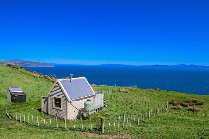 Wellington Scenic Farm Tour