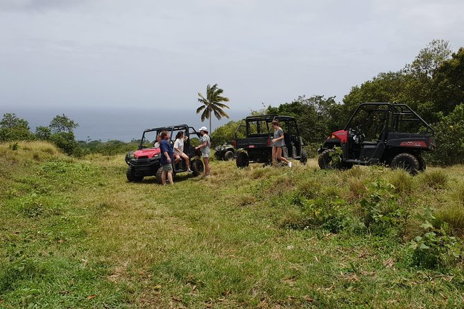 Jungle Bikes Dune Buggy & Beach Tours
