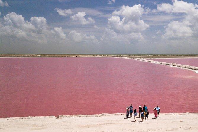 Piccolo gruppo Las Coloradas Laghi rosa da Cancun