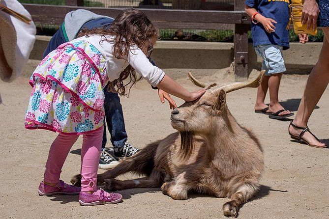 San Francisco Zoo General Admission