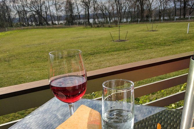 Half-Day Winery Tour by Trolley from Richmond Virginia photo 2
