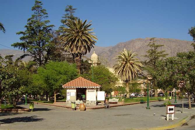 Full-day Cafayate, Lerma Valley, and Wine Tasting from Salta