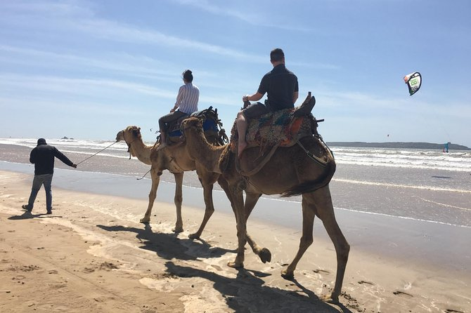 Full Day Trip To Essaouira From Marrakech Including Camel Ride