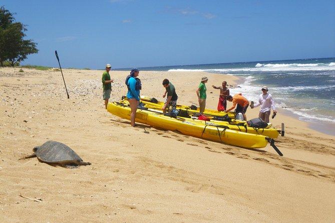 Kauai Sea Kayaking Tour of Na Pali Coast