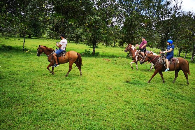 Wild Life And Horseback Riding Through The Rain Forest