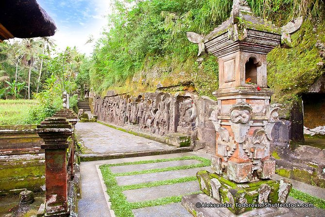 Private Tours: Cycling to Rice fields of Ubud village-Yeh Pulu Temple-Lunch