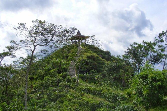 Half-day Private Menoreh Hill Trekking Tour from Borobudur