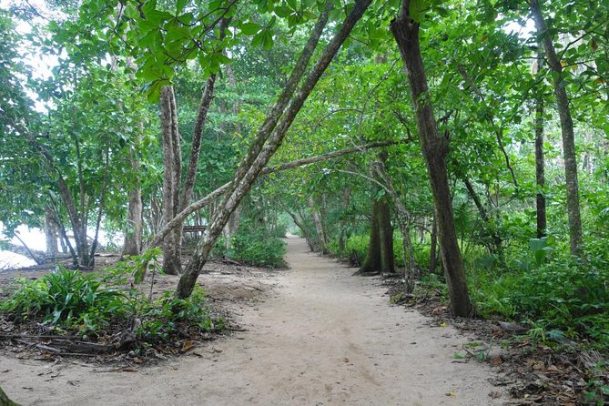 Cahuita National Park and medicinal plants