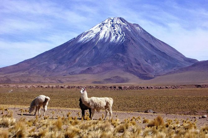 Overnight Licancabur Volcano Trekking Tour from San Pedro de Atacama