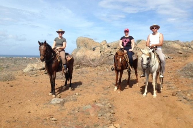 Aruba Private, 2 Hour Horseback Riding Tour For Advanced Riders