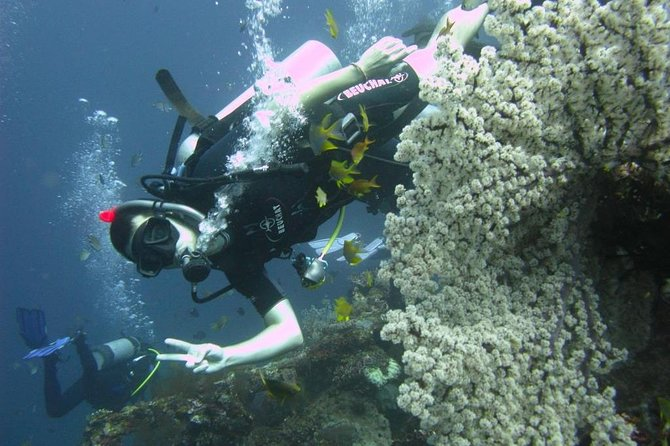 2-Day PADI Advanced Open Water Dive Course in Bali photo 1