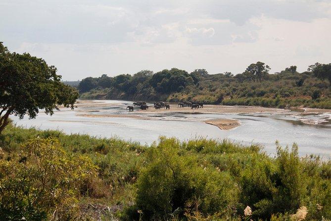 Kruger - Lower Sabie
