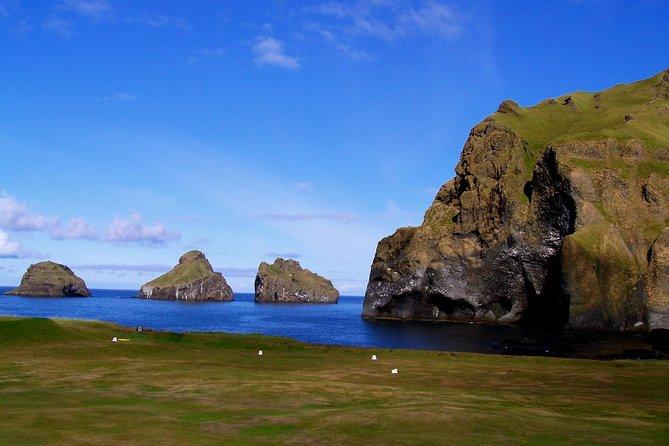 Dagtocht door de Westman-eilanden vanuit Reykjavik met sightseeing per bus en boot