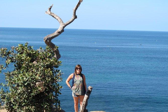 Visite privée touristique de San Diego