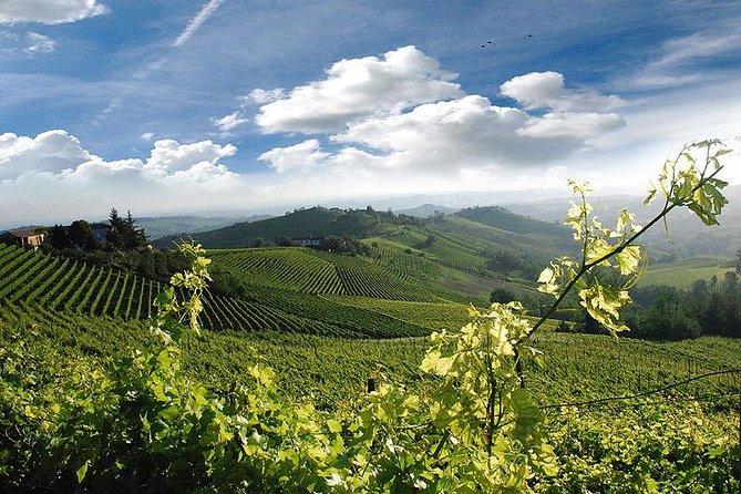 Wijnproeverij en Unesco-werelderfgoed Kelders Bezoek vanuit Turijn